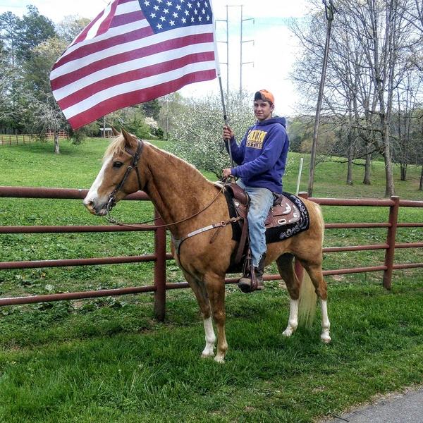 YOUR DREAM HORSE COME TRUE!!!!!