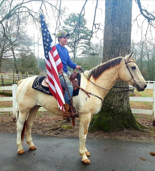 DREAM HORSE ALERT!!!