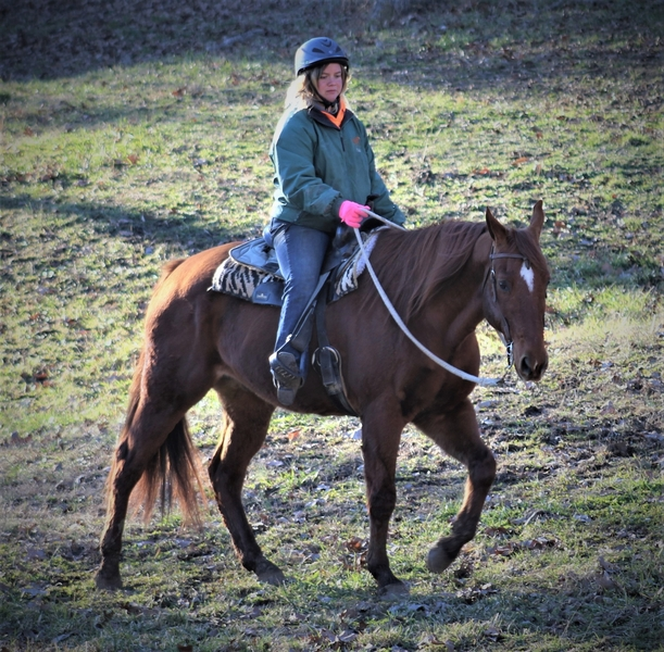 **SOLD** Wonderful Trail Gelding, Big Silly Personality!