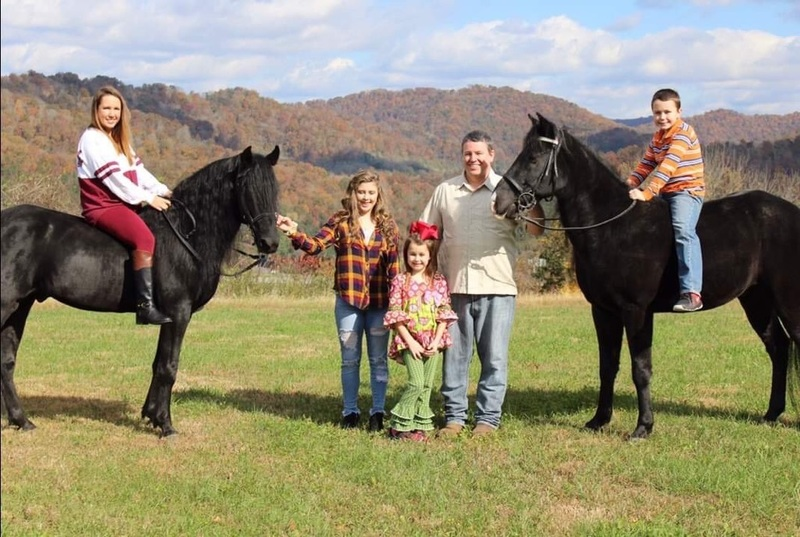 Beautiful Accomplished Trail Stallion