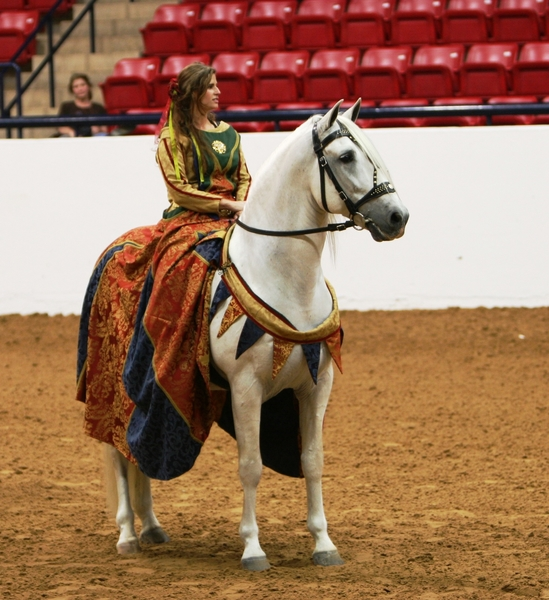 Saltador ORO, Horse of the Year at Stud