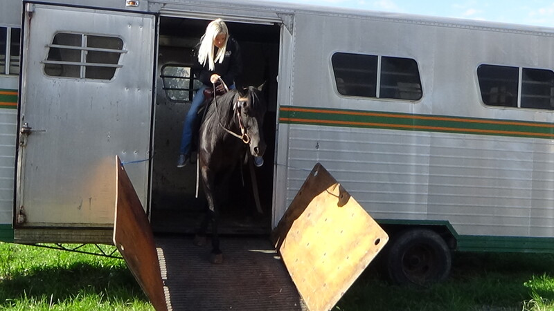 Bombproof Beginner Safe TWH 30 Day GUARANTEE