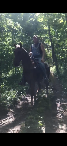 Easy Going Fantastic Trail Horse