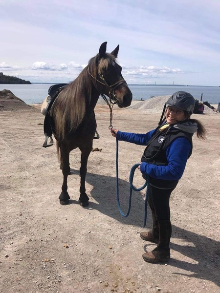 Stunning Well Bred Mare With Tons Of Trail Miles