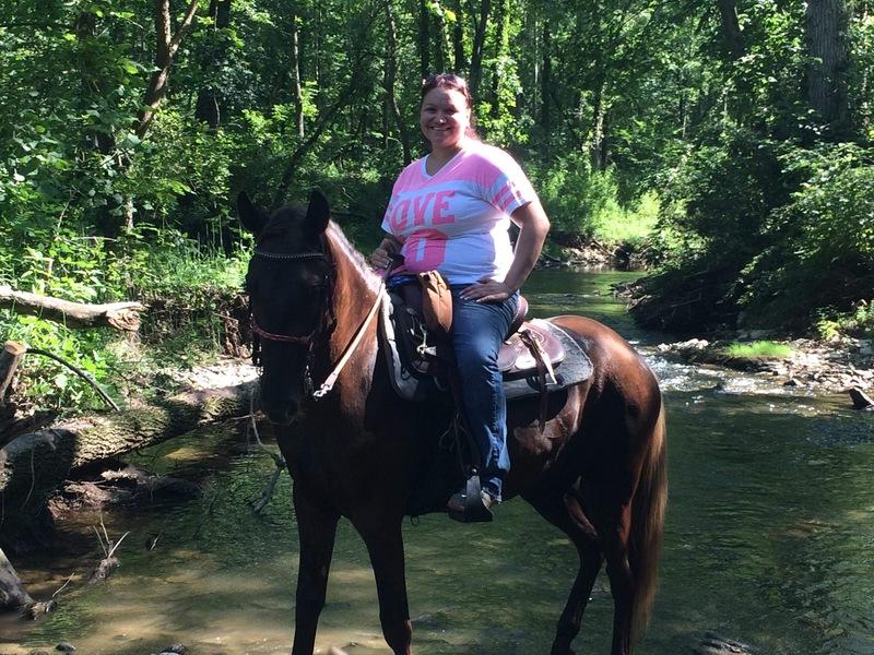 Sweet 16 HH Chocolate Trail Horse